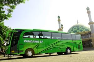 Profil Pandawa 87, Pendatang Baru Asal Pasuruan Nan Elegan Di Segmen Bus Pariwisata