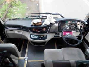Matic Hino RG - City Trans Utama
