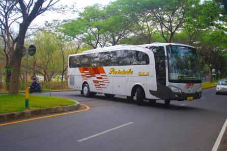 morodadi prima - jetbus