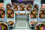 IIBT 2016 - Imotorium Files Scania K250 Laksana Cityline X10 (45)