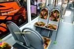 IIBT 2016 - Imotorium Files Scania K250 Laksana Cityline X10 (47)