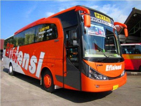 Profil dan Sejarah PO Efisiensi - livery 2010 - 2011