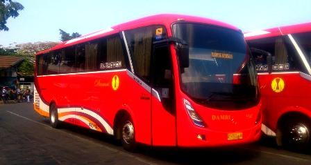 bus-bandung-cirebon-1